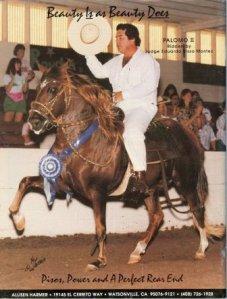 Peruvian_Caballo0003